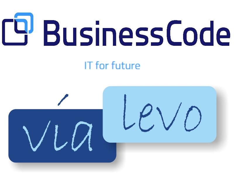 BusinessCode vialevo Logo